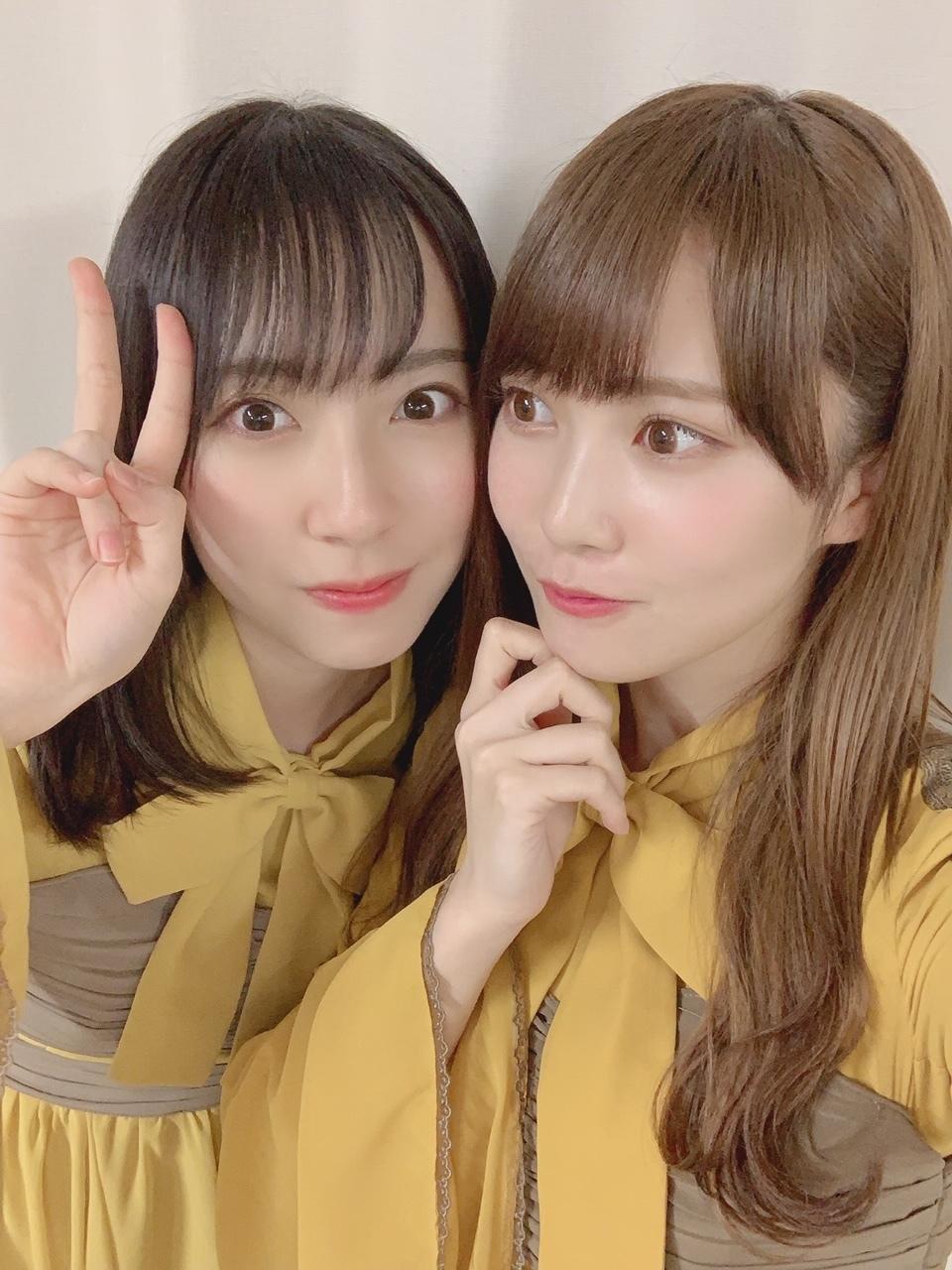 出演 日 向坂 46 予定 テレビ